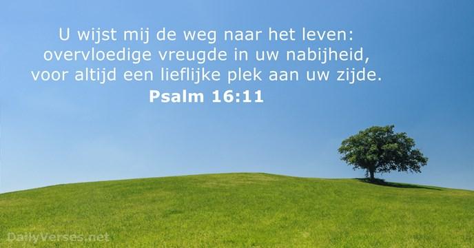 Afbeeldingsresultaat voor psalm 16 11