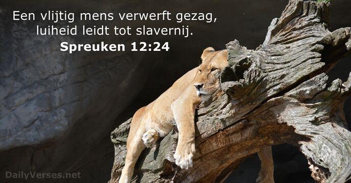 spreuken 12 13 februari 2019   Bijbeltekst van de dag   Spreuken 12:24  spreuken 12