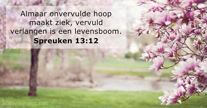 Spreuken 1312 Bijbeltekst Van De Dag Dailyversesnet