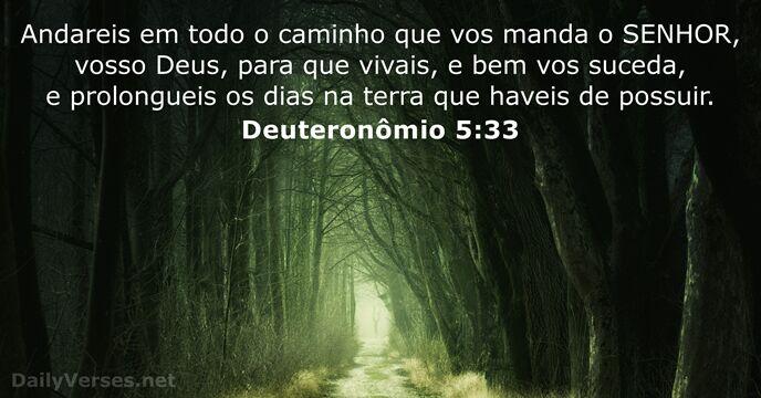 29 Versículos Da Bíblia Sobre Seguir Dailyversesnet