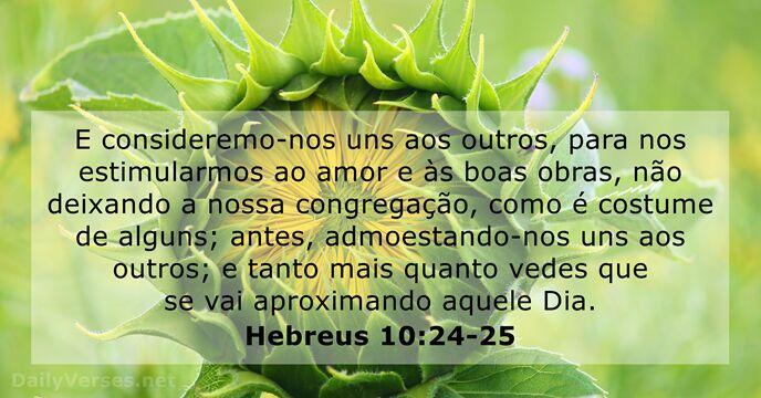 23 Versículos Da Bíblia Sobre A Comunidade Dailyverses Net