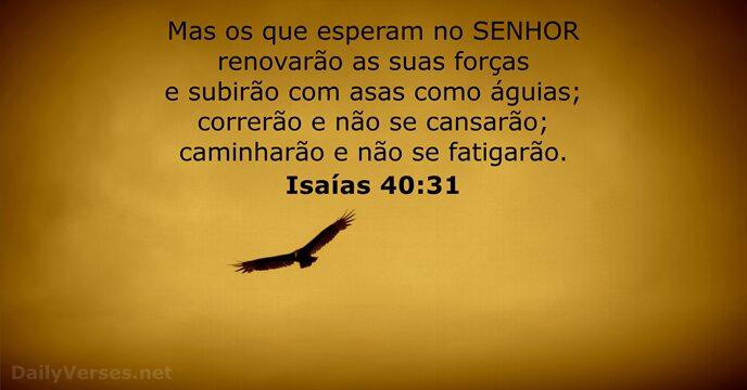 31 Versículos Da Bíblia Sobre Encorajamento Dailyversesnet
