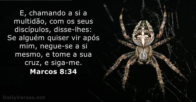 marcos 8:34