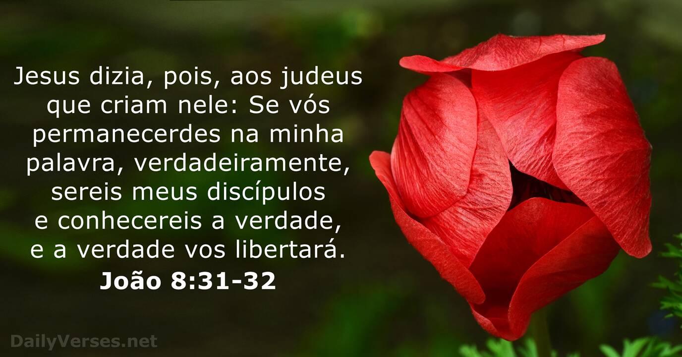 João 8:31-32 - Versículo da Bíblia do dia - DailyVerses.net
