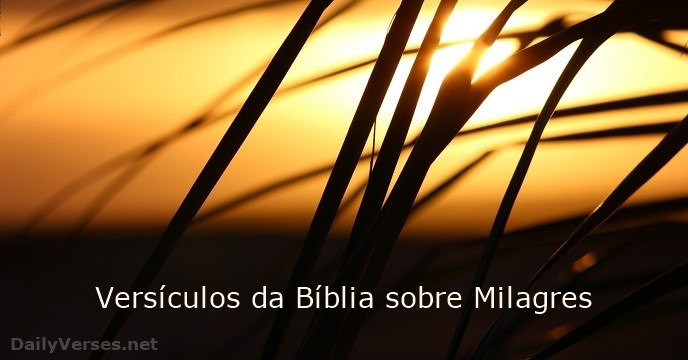 20 Versículos Da Bíblia Sobre Milagres Dailyversesnet